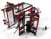 Professional Synergy Gym Equipment , Multi Functional Synergy 360 Fitness Machine